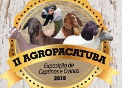 10 a 15 de setembro – AGROPACATUBA