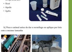 Manual Senar com manejo sanitário para ovinos.