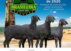 BRASILEIRA DO SANTA INÊS – 15 a 22 de Março