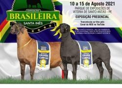 BRASILEIRA 2021 -10 a 15 de agosto